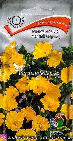 """Семена пакетированные Поиск. Мирабилис """"Желтый леденец""""., фото 2"""