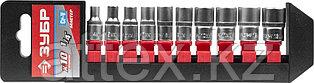 """Набор ЗУБР """"МАСТЕР"""": Торцовые головки (1/4"""") на пластиковом рельсе, Cr-V, 4-13мм, 10 предметов 27656-H10"""