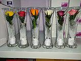 Живые цветы в стекле CuHRp-2, фото 3