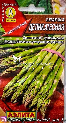"""Семена пакетированные Аэлита. Спаржа """"Деликатесная"""", фото 2"""