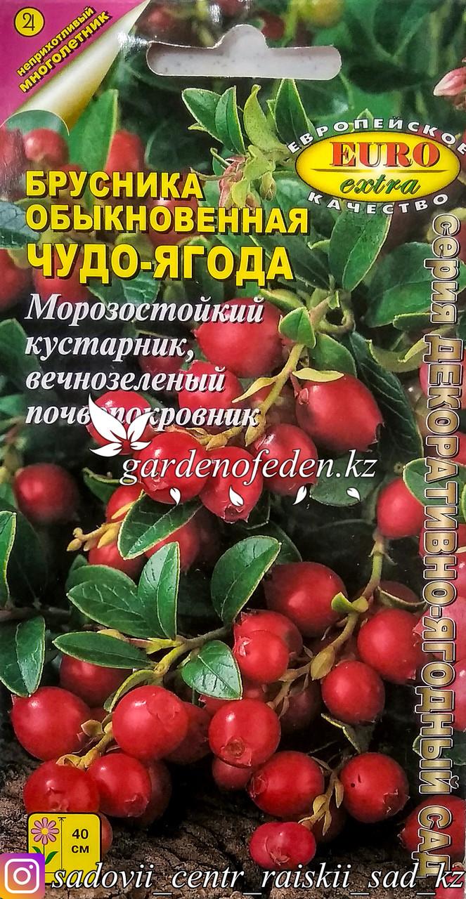 """Семена пакетированные Euro Extra. Брусника """"Чудо-ягодка"""""""