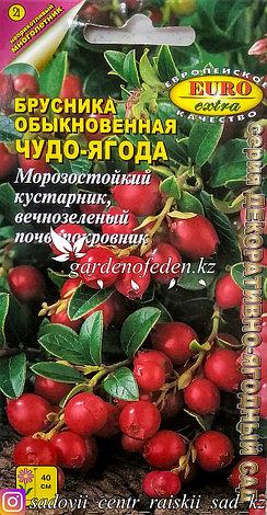 """Семена пакетированные Euro Extra. Брусника """"Чудо-ягодка"""", фото 2"""