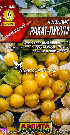 """Семена пакетированные Аэлита. Физалис """"Рахат-лукум"""", фото 2"""