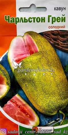 """Семена пакетированные Яскрава. Арбуз """"Чарльстон Грей"""", фото 2"""