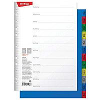 Разделитель листов Berlingo A4, 12 листов, Январь-Декабрь, цветной, пластиковый