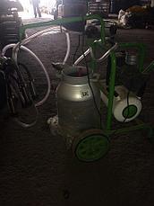 Турецкий доильный аппарат Agrolead 1 бидон 1 пульсатор, фото 3