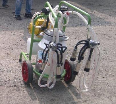 Турецкий доильный аппарат Agrolead 1 бидон 2 пульсатора, фото 2