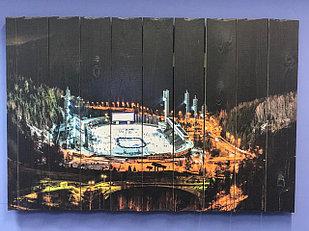 Картина «Медеу» 90×60 см