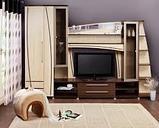 Мебель для гостиной, фото 9