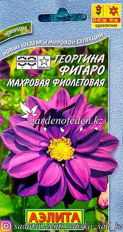 """Семена пакетированные Аэлита. Георгина Фигаро """"Махровая, фиолетовая"""", фото 2"""