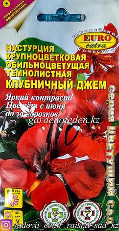 """Семена пакетированные Euro Extra. Настурция крупноцветковая """"Клубничный джем"""", фото 2"""