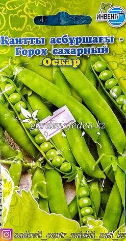 """Семена пакетированные Инвент+. Горох сахарный """"Оскар"""", фото 2"""