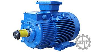 Электродвигатель 5АИ 132 М6  7.6/1000  IM  1081 7,5 кВт/1000 об.мин