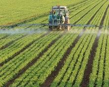 Животноводство и сельское хозяйство