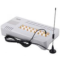 VoIP-GSM шлюз HyberTone GoIP 16, фото 1