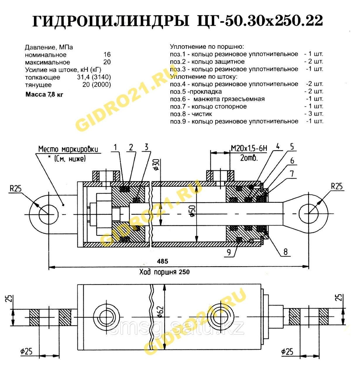 Гидроцилиндр ЦГ-50.30х250.22