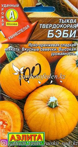 """Семена пакетированные Аэлита. Тыква твердокорая """"Бэби"""", фото 2"""