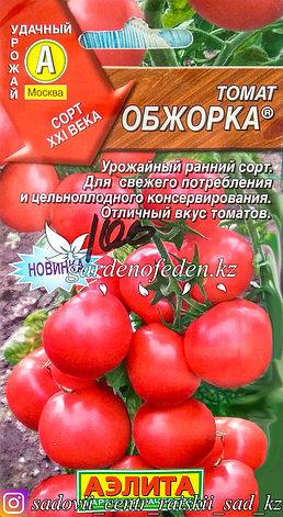 """Семена пакетированные Аэлита. Томат """"Обжорка"""", фото 2"""