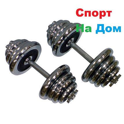 Гантели разборные Хром 15+15 кг, фото 2