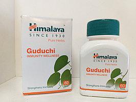 (Guduchi Himalaya) Гудучи - Иммуномодулятор