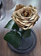 Стабилизированная роза в колбе