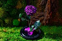 Роза в колбе Вечная роза