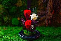 """Композиция """"Трио"""" Стабилизированные розы"""