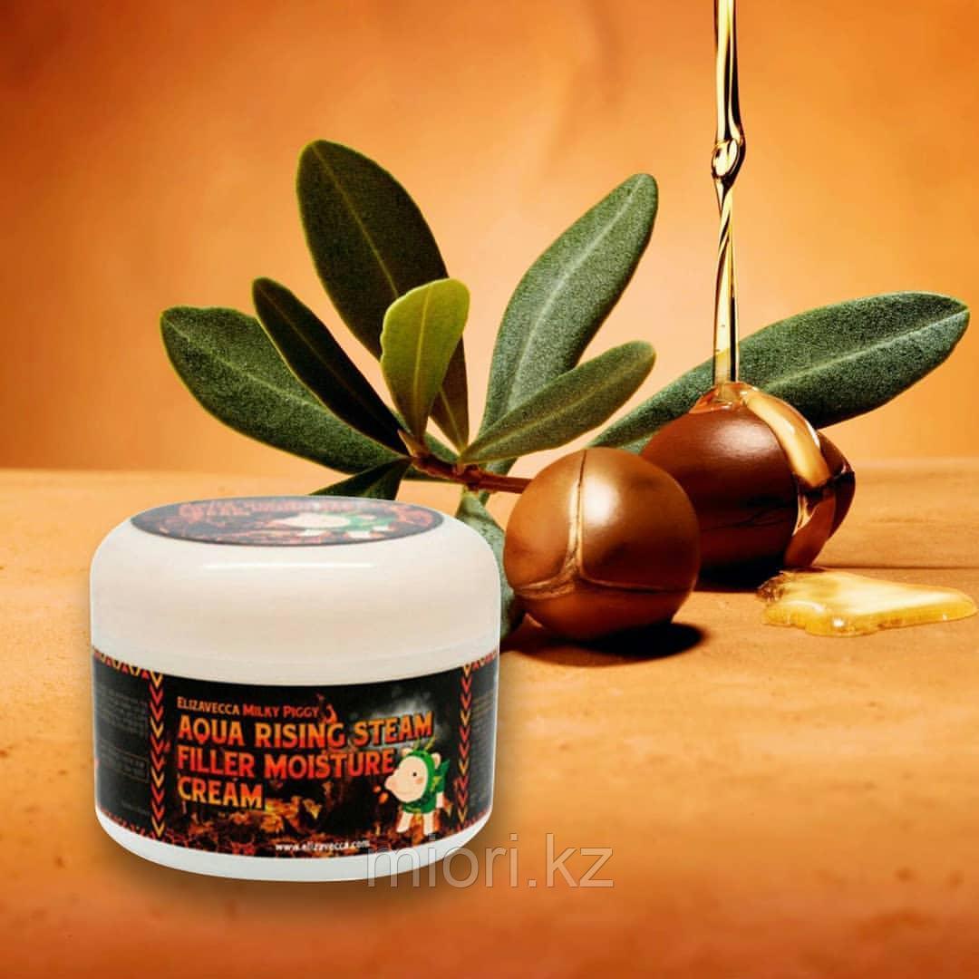 Milky Piggy Aqua Rising Argan Gelato Steam Cream,  Паровой увлажняющий крем с маслом арганы