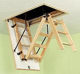Чердачная лестница 60х120х335 FAKRO LWK Komfort, фото 3