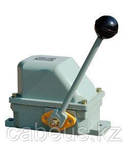 ВУ-702 У1, рычаг с ручкой, 2 положения, 10А, IP44, 2 эл. цепи, выключатель концевой ручной  (ЭТ)