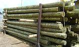 Деревянные опоры ЛЭП, столбы для линий электропередач и связи, фото 3