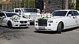 Оформление свадебных машин, авто на свадьбу, фото 2