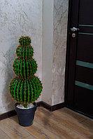 Искусственный кактус (ботаническая копия)