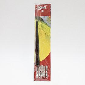 Перьевая ручка с насадками, 5 шт.