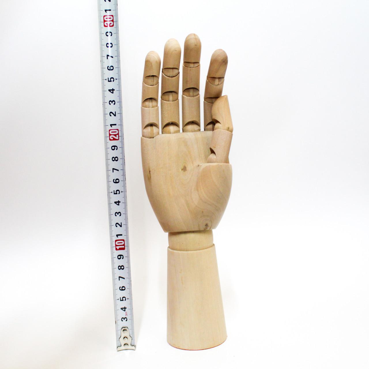 """Модель """"Рука"""" 29 см, правая"""