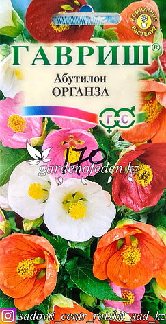 "Семена пакетированные Гавриш. Абутилон ""Органза"", фото 2"