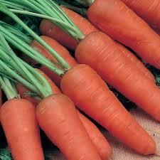 Семена морковь Шантенэ Королевская (банка-500гр - 425000шт)
