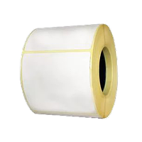 Термоэтикетка самоклеющаяся 58*100 мм (250 эт/рул)