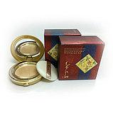 Компактная пудра с экстрактом корня женьшеня + сменный блок Yezihu Bergamo, фото 4