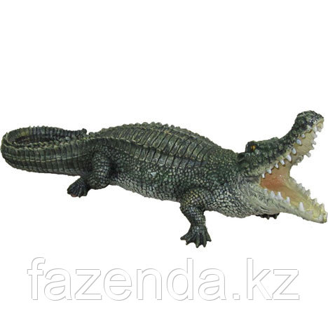 Крокодил малый L-55см