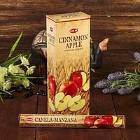 """Благовония """"HEM"""" 20 палочек угольные cinnamon apple"""