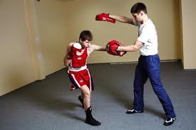 Лапы для бокса