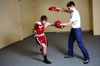 Лапы для бокса, фото 1
