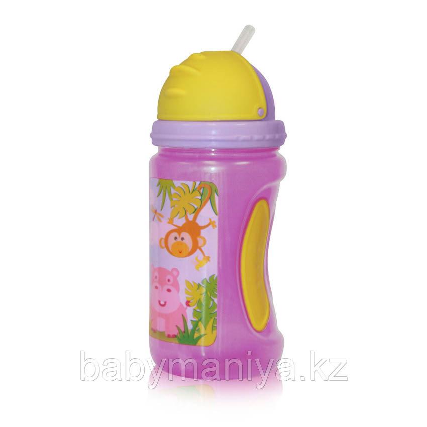 Бутылочка для кормления Baby Care Bertoni 350 мл
