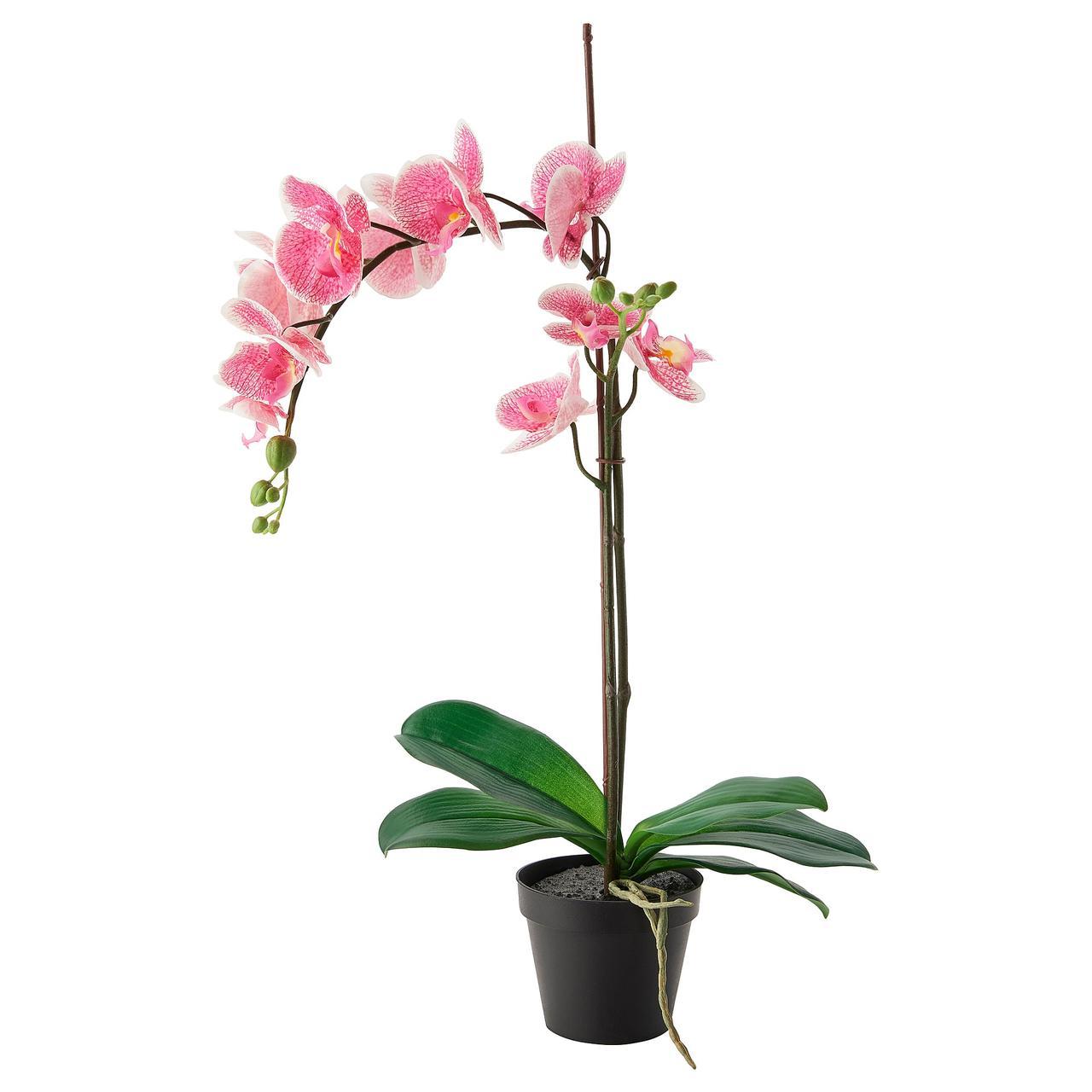 ФЕЙКА Искусственное растение в горшке, Орхидея розовый