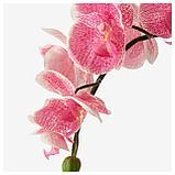 ФЕЙКА Искусственное растение в горшке, Орхидея розовый, фото 4