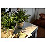 ФЕЙКА Искусственное растение в горшке, Комнатный бамбук, фото 5