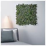 ФЕЙКА Растение искусственное, настенный, д/дома/улицы зеленый, фото 6