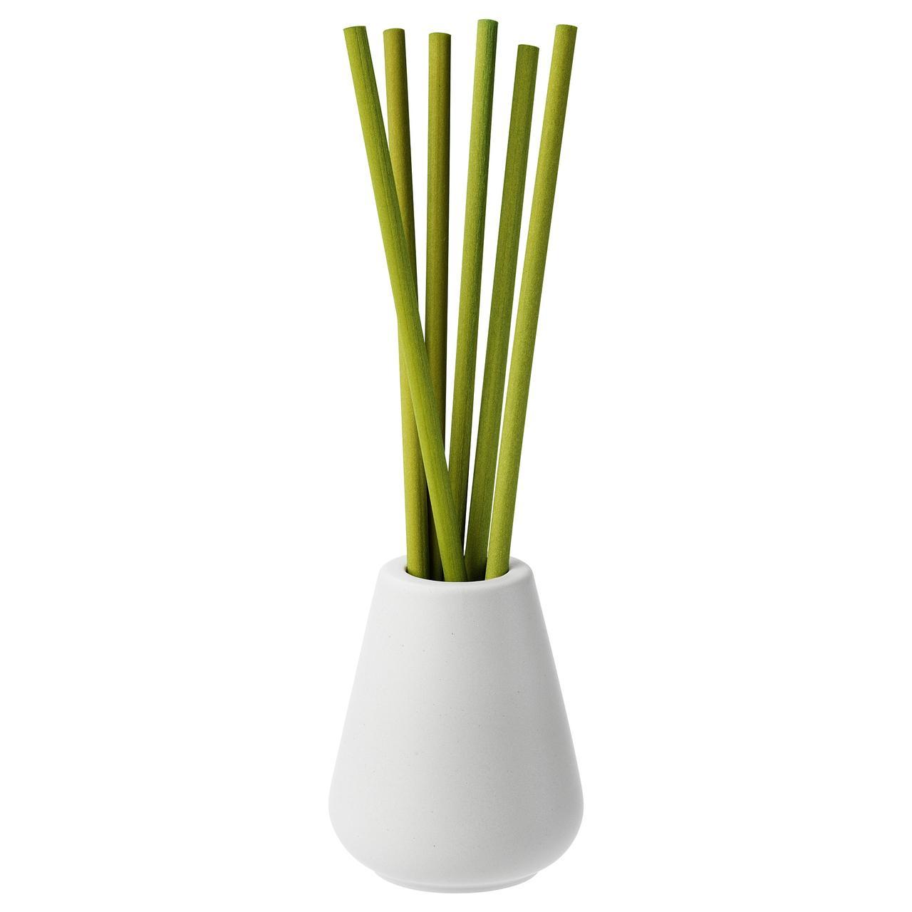 НЬЮТНИНГ Ваза и 6 ароматических палочек, Травы, зеленый