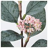 СМИККА Цветок искусственный, розовый эвкалипт, розовый, фото 2